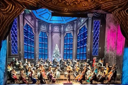 концерт в опере